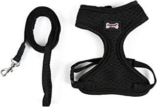 WORDERFUL Mesh Cat Harness with Leash Pet Harness Set Cat Walking Vest for Kitten and Puppy