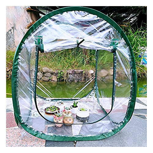 Pliable Serre Pop-up Transparence Élevée Étanche À La Poussière Étanche Patio Portable Petite Tente À Effet De Serre (Color : Clair, Size : 60x60x70cm)