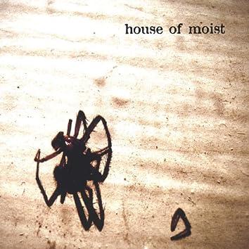 (Spider Album)