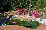 Laghetto decorativo da giardino Atossico, ottimo per ospitare pesci e piante Capacità lt. 610