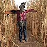 Haunted Hill Farm Life-Size Animatronic Scarecrow, Indoor/Outdoor, Laughing, HHSCR-3FLSA Halloween Decoration, Color 1