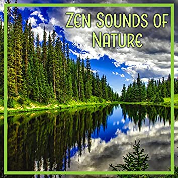 Zen Sounds of Nature: Relaxing Noise and Music for Meditation, Yoga and Deep Massage