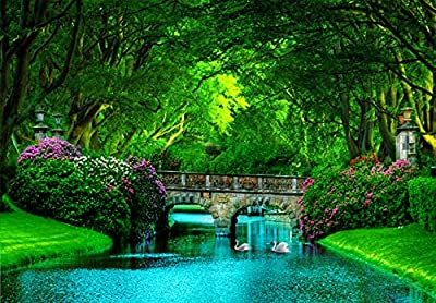 Horizon Smarts Jigsaw Puzzles 1000 Pieces Puzzle for Adults Nature Collection Train Your Brain Beautiful Colorful Puzzles for Adults Hard Difficult and Fun by Horizon Smarts