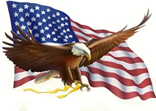 SDore Eagle American Flag Edible 1/2 Half Sheet Image Frosting Cake Topper Birthday Party