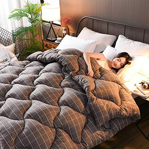 CHOU DAN Spring and Autumn Festival 3d Goose Down Duvet Quilted Quilt King Queen Full Size Comforter Winter Thick Blanket-Green_180CM 220CM 3KG