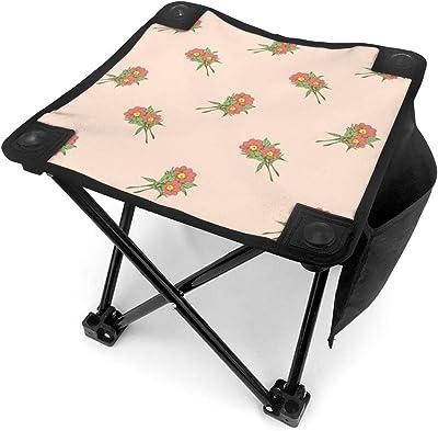 Decoris Chaise de Jardin Pliable Gris Charbon (x2) Oslo ...