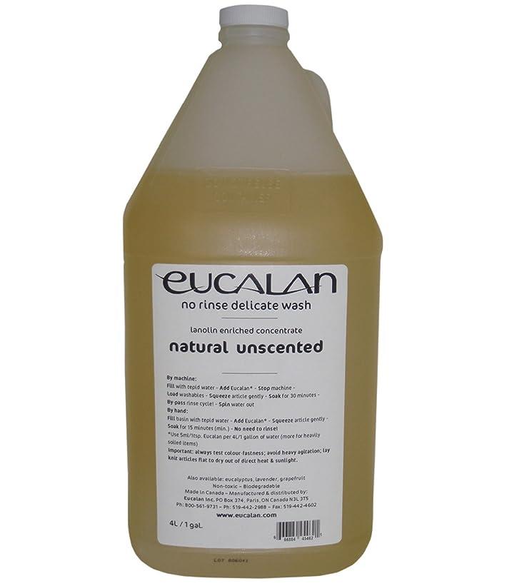 準備する分析する効率的Eucalan 罰金ファブリック洗浄ガロン水差し無香性