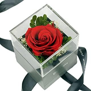 Best forever roses that never die Reviews