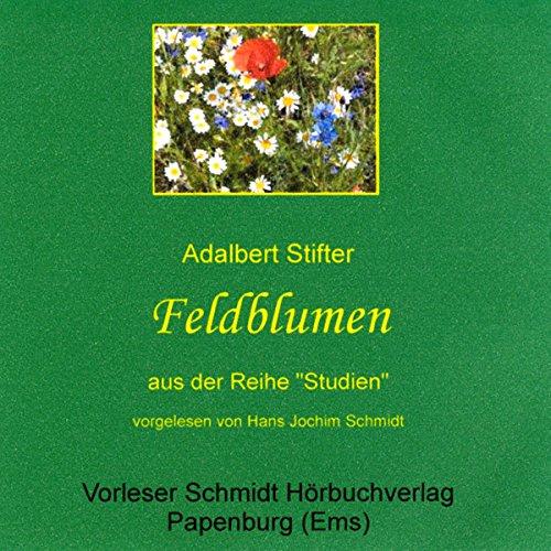 Feldblumen Titelbild