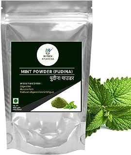 Nxtgen Ayurveda Mint Powder (Pudina) - 100 gm