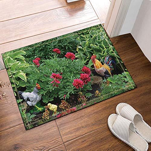 hdrjdrt Alfombra de baño antideslizante con diseño de pollos en la hierba, para el suelo, entrada al aire libre, interior y exterior, alfombrilla de baño para niños, 60 x 40 cm, accesorios de baño