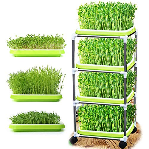 Seed Sprouter Tray Sprouts with 4 Layers Stainless Steel Shelf Soil-Free Seedlings Wheat Grass Saver Planter Hydroponics Permanent Seeds Germination Tray for Garden Home