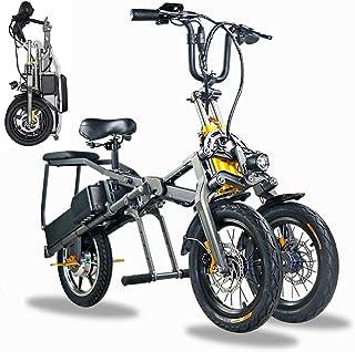 myself Folding Electric Bike for Adults 3-Wheel Mountain E-Bike 250-350W Removable Lithium Battery 36V/48V Motor Travel El...