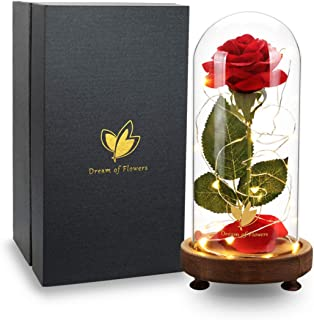 Red Silk Rose Flower and 20Led Light in Glass Dome,Beauty and The Beast Rose,Decoration Home,Amazing and Romantic Gifts for Women, Christmas, Wedding,Valentine's Day, Anniversary and Birthday (N1)