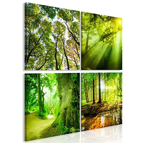 decomonkey Bilder Natur Wald 40x40 cm 4 Teilig Leinwandbilder Bild auf Leinwand Vlies Wandbild Kunstdruck Wanddeko Wand Wohnzimmer Wanddekoration Deko Baum Landschaft