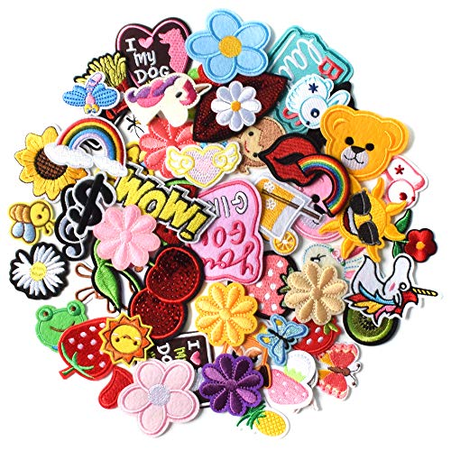 AXEN 60PCS Embroidered Iron On Patches DIY Accessories, Random Assorted Decorative Patches , Cute Sewing Applique for Jackets, Hats, Backpacks, Jeans, 60 Pieces Package