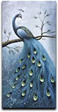 Best the painted peacock Reviews