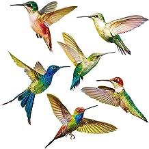 Kolibrie Sticker Glass Decal raamsticker, Prevent Vogels van het raken van niet-klevende 6pcs