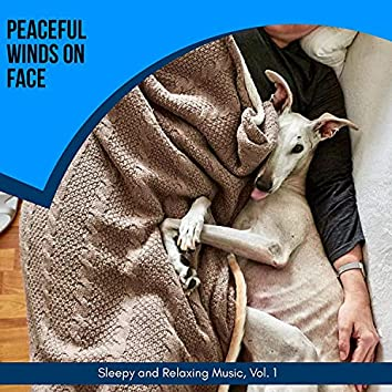 Peaceful Winds On Face - Sleepy And Relaxing Music, Vol. 1