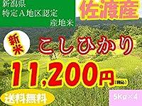 平成28年新潟県産特定産地米 (佐渡産5㎏×4)