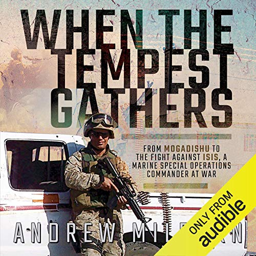 When the Tempest Gathers Audiobook By Andrew Milburn cover art