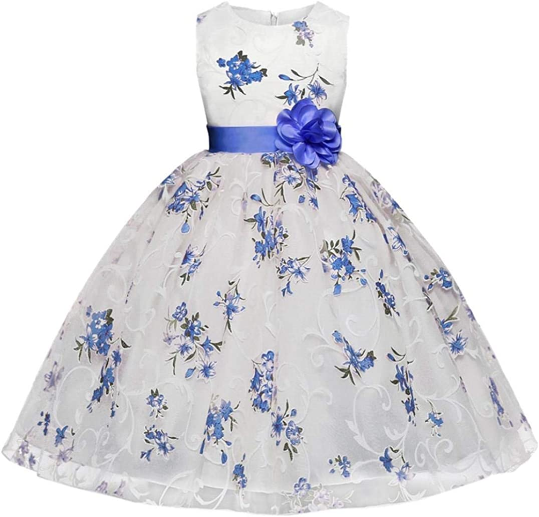Girls Princess Dress for 20 20 Years Old,Kids Child Girl Clothes Sleeveless  Floral Wedding Party Dresses Ball Gown