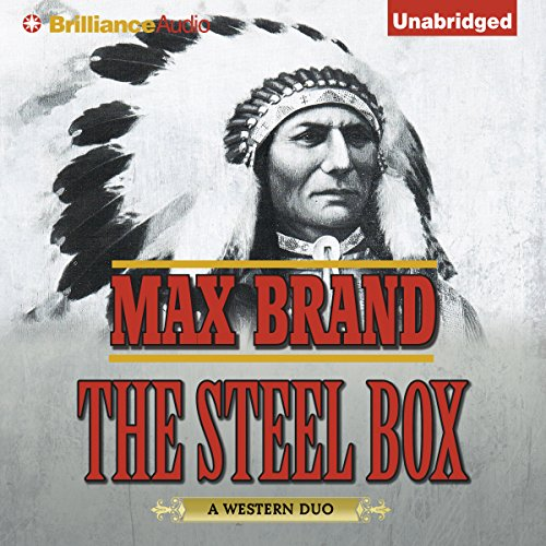 The Steel Box audiobook cover art