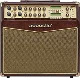 Acoustic A100