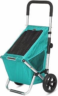 Playmarket GO FUN - Carro de la compra plegable con ruedas, color verde
