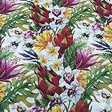 Kt KILOtela Tela de loneta Estampada Digital - Retal de 100 cm Largo x 280 cm Ancho | Botánico, Tropical - Multicolor ─ 1 Metro