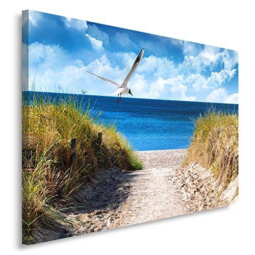 Feeby, Leinwandbild, Bilder, Wand Bild, Wandbilder, Kunstdruck 50x70cm, Meer, DÜNEN, Weg, Strand, MÖWE, GRÜN, Sand