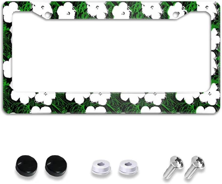 Ranking TOP1 ZXFBC License Easy-to-use Plate Car Frame Stainle