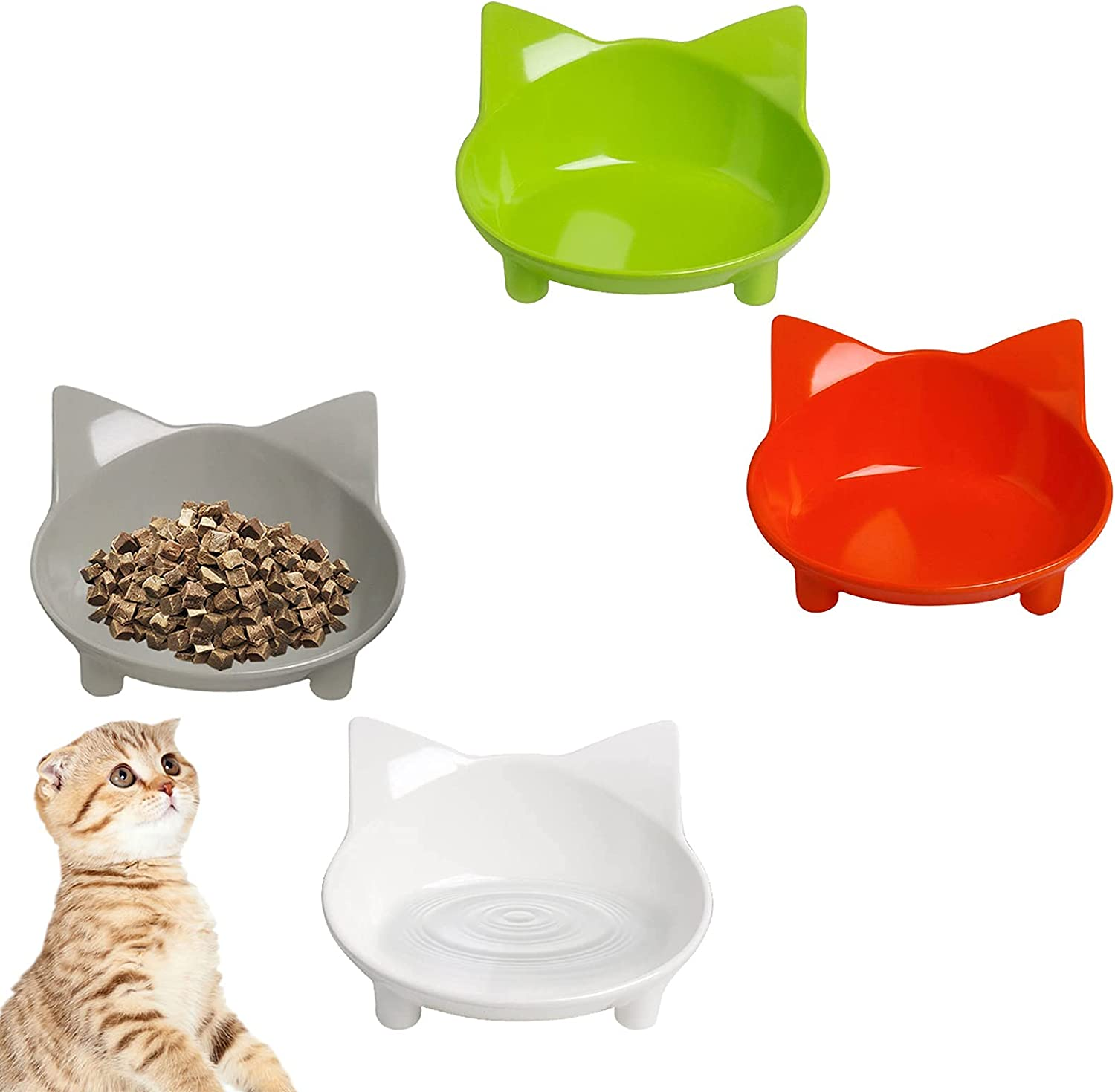Cat Bowl Non Slip Food Bowls Water Time sale Ranking TOP19 Shallow Pet
