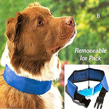 Cool Dog Collar With Removable Ice Pack: photo