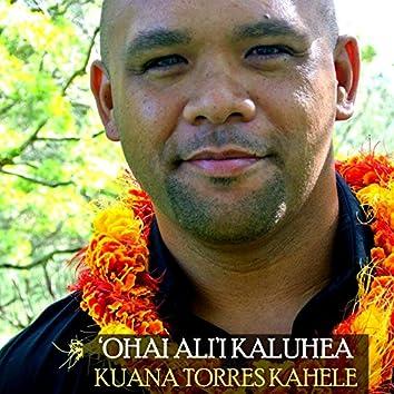 Ohai Ali'i Kaluhea