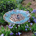Solar Bird Bath Fountain By Sunlitec