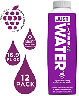 JUST Water Infused | Organic Fruit Flavored Spring Water | Eco-Friendly Boxed Bottled Water | Zero Sugar, Artificial Flavors, or Sweeteners, 8.0 Alkaline pH | Blackberry, 16.9 fl oz (Pack of 12)