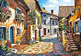 Amnogu Puzzles Rompecabezas Castorland European Streets 1000 Piezas Rompecabezas Juguetes