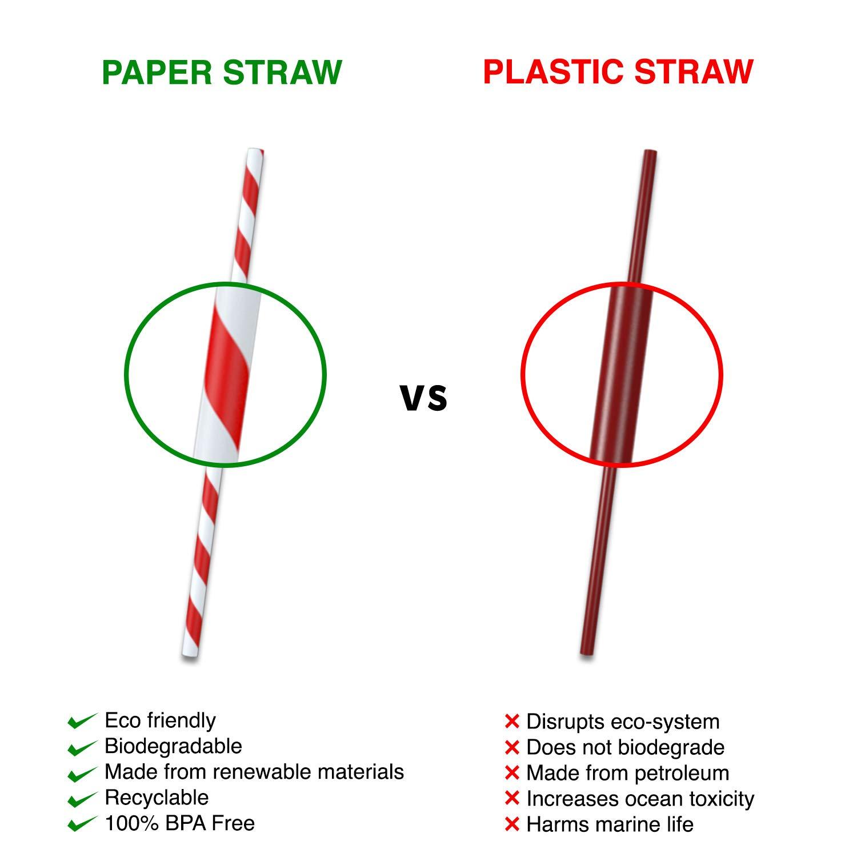 Masakali - 200 pajitas de papel biodegradables con 10 colores ...