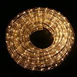 Ainfox LED Rope Light, 33Ft 360 LEDs LED Strip Lights Indoor Outdoor Waterproof Decorative Lighting (Warm White)