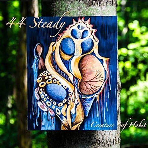 44 Steady