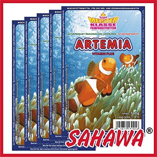 SAHAWA® Frostfutter Artemia 10 x 100g Blister + 1 Blister Daphnien gratis, verpackt mit Trockeneis -78°C, Aquarium, Aquaristik, Fischfutter, Frostfutter