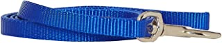 Coastal Dog Leash Small - 4 Ft. Blue with a Width of 3/8 in.