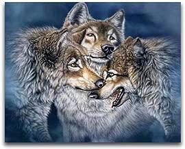 SHJDY Yuhua Volledige diamant borduurwerk Wolf Moz...