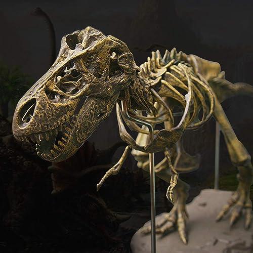 HTAIYN 2 Stücke Jurassicinosaurier Tyrannosaurus Rex Skeleton Trex Tier Modell Kinder Spielzeug Geschenk Popular