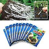 10 Stück Bewurzelungspulver, Pflanzenblumen Wurzelpulver, beschleunigt das Wachstum stimuliert die Wurzeln für alle Pflanzensorten Wachstumsmedien