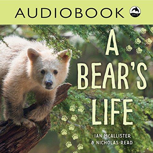 A Bear's Life cover art