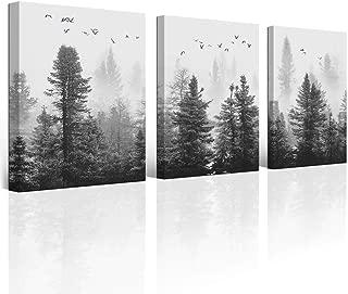 Best black and white dark art Reviews