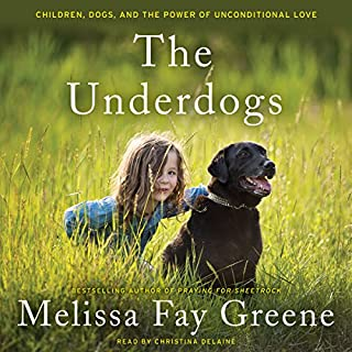 The Underdogs audiobook cover art