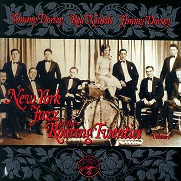 New York Jazz In The Roaring Twenties Vol. 3